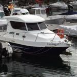 ORCA 840 de EJE CON YANMAR DIESEL DE 260 CV